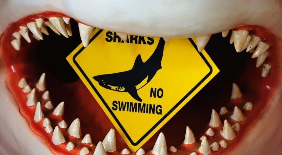 Are Sharks Reptiles