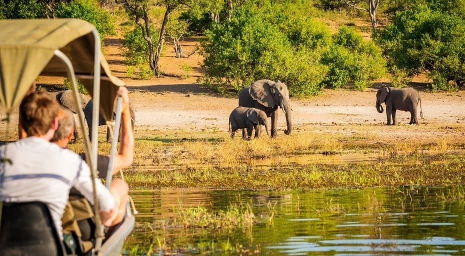 Best Places to See Wildlife