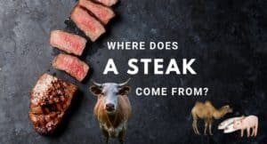 Where Does A Steak Come From?